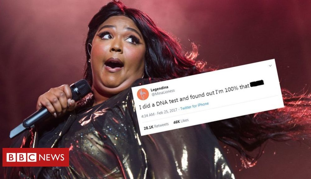Truth Hurts: Lizzo credits author of 'DNA test' tweet
