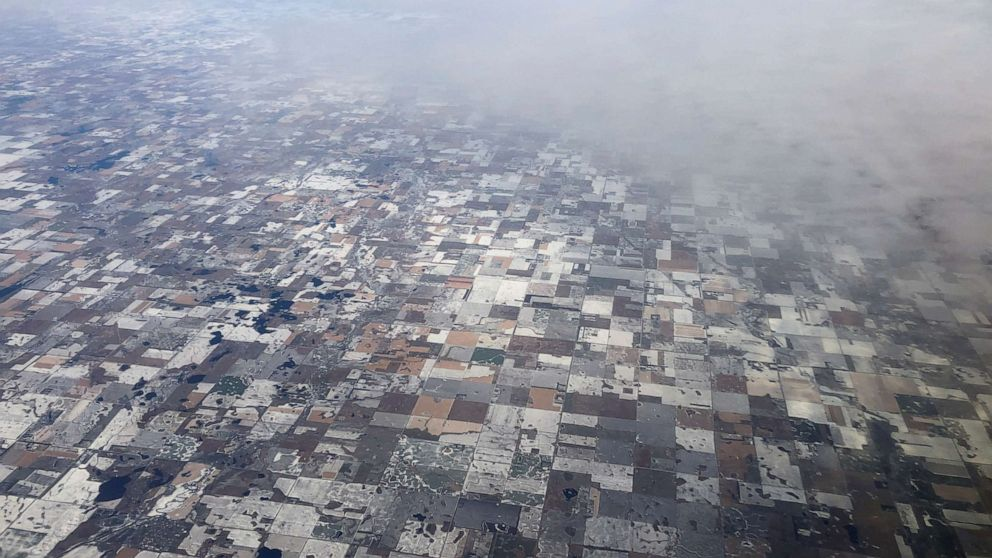 Hollywood Arctic blast on capacity will probably pickle hundreds of records this week