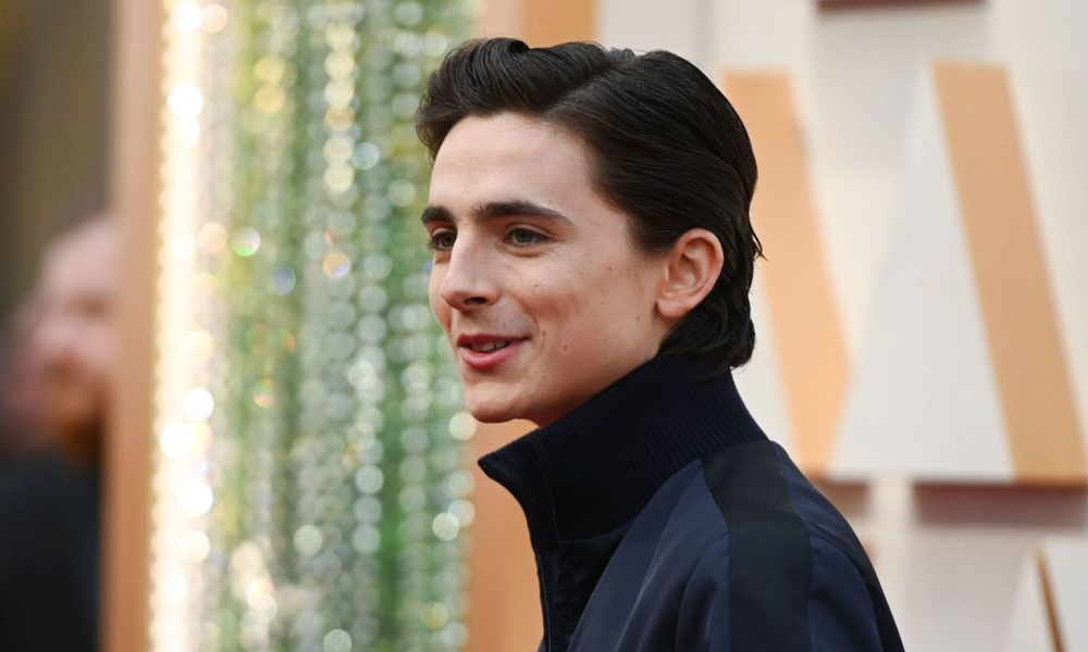 Timothée Chalamet Was A Slick-Haired, Photobombing Stud At The 2020 Oscars