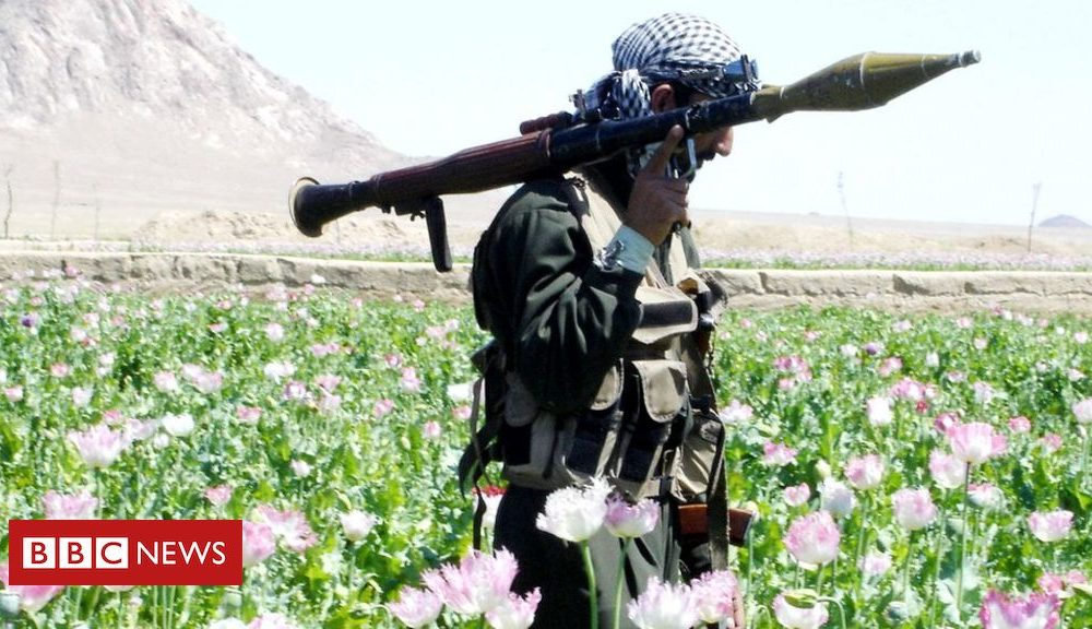 Afghanistan warfare: US and Afghan Taliban conform to partial truce
