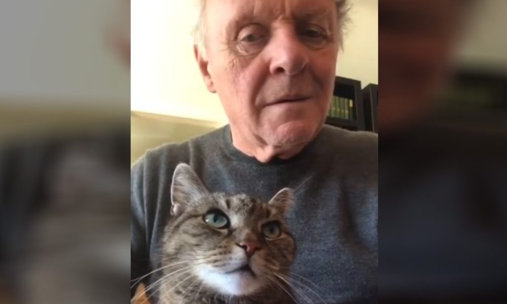 Anthony Hopkins performing piano for the assist of his cat, Niblo