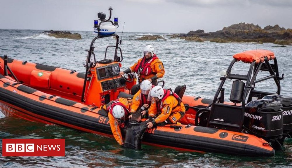 St Abbs lifeboat crew awarded fresh build of living