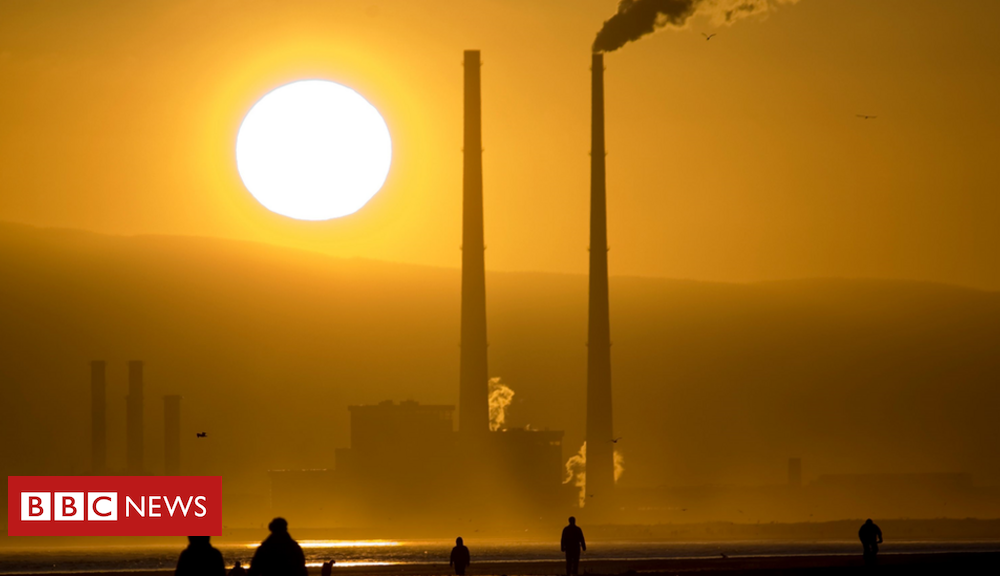 Hollywood Local climate substitute: Eire on the verge of its 'greenest authorities ever'