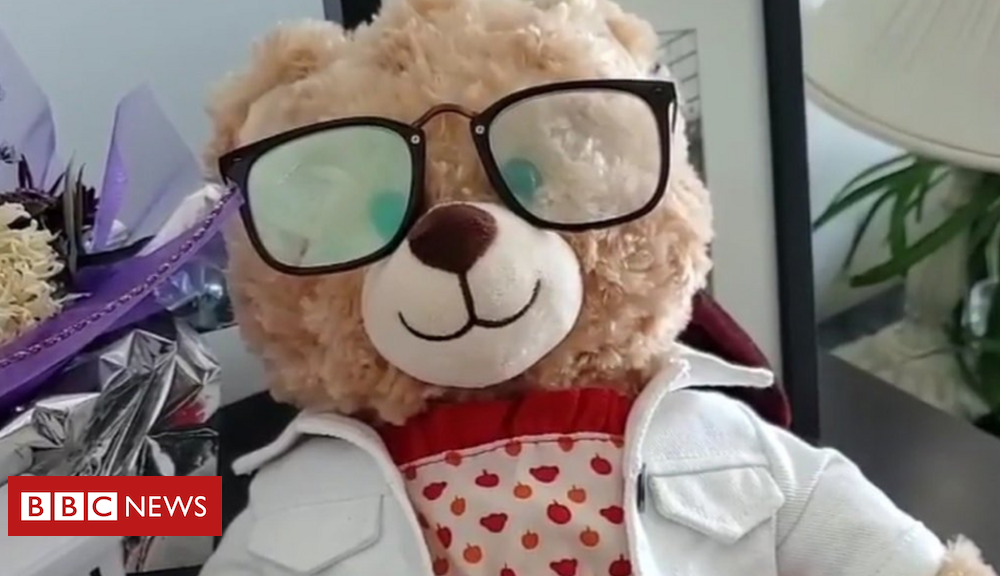 Mara Soriano: Stolen teddy endure with dying mum's message stumbled on