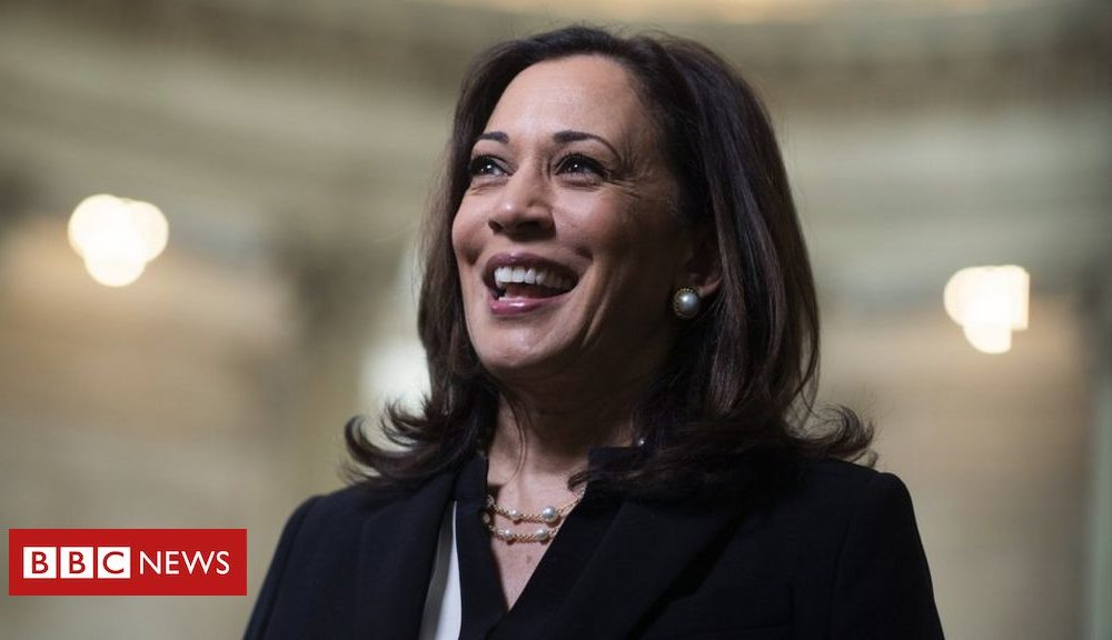 Kamala Harris: Nations high-tail to to find fun Biden's running mate